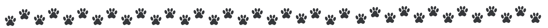 officehounds white label social media paw pattern